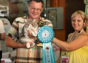 WCF Cat Show Odessa 25-26 May 2013