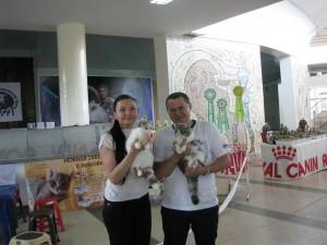 WCF Cat Show Krivoy Rog 18-19 May 2013